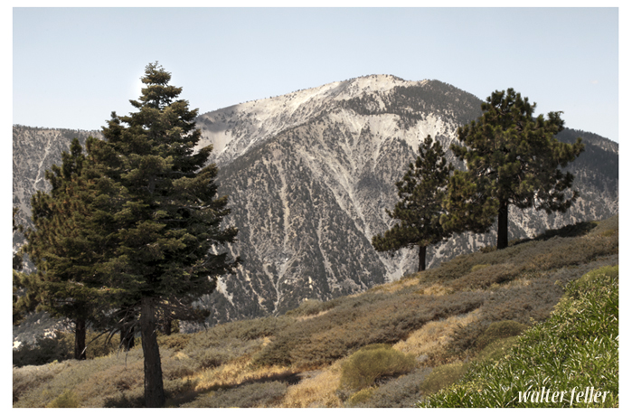 Photo of mt. Baden Powell from Inspiration Point